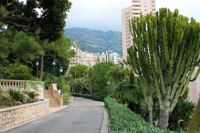 виды Монако