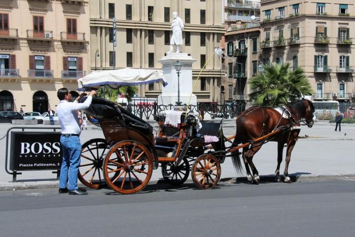 Лошади в Палермо